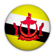 sms software brunei